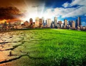 puisi lingkungan
